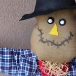 DIY: Scarecrow